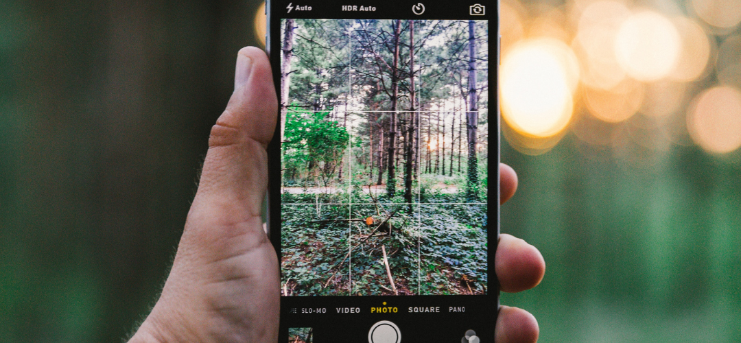 Considering Camera Phone Options? Here are Some Suggestions